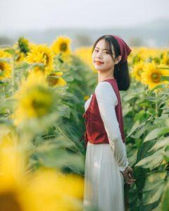Khám phá Miệt vườn cây trái Bắc Giang